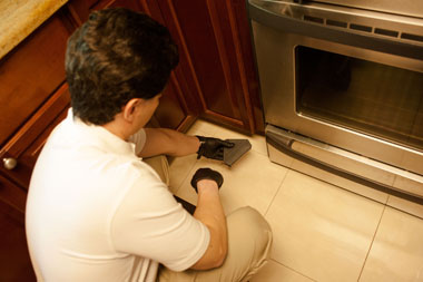 Pest Control for Mice in New Jersey